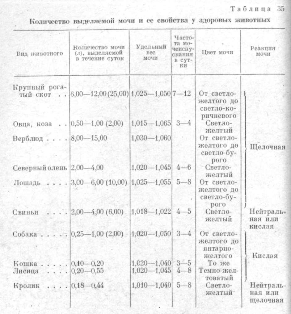 Сахарный диабет в россии 2013